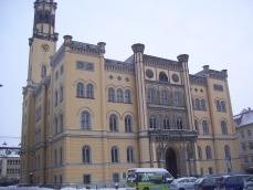 Das Rathaus in Zittau (nahe meinem Wohnort)