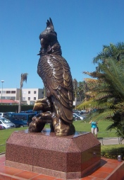 Loro-Parque - Mein Grund für den Teneriffa-Urlaub
