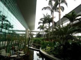 Frische Luft und 1. Eindruck vom Flughafen Guayaquil, Ecuador nach 14h Flug
