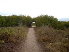 "Der ""Eingang"" zum La Loberia"