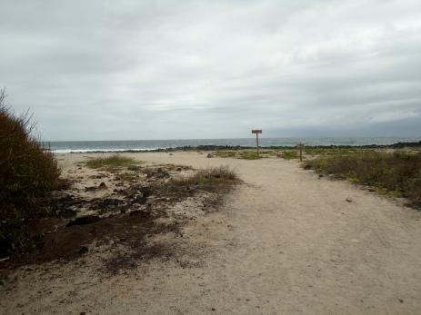 Erster Blick auf den einsamen Strand