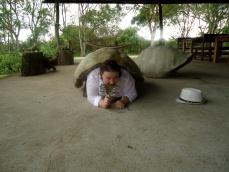Einmal im Leben Schildkröte sein ...