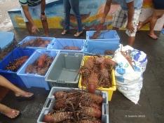 Fischmarkt mit Unmengen Hummer