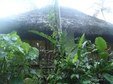 Meine Cabana im Urwald