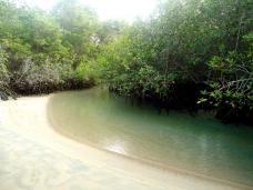Lagune El Estero