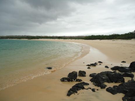 Ausgesetzt am Strand im Norden von Santa Cruz (Blick nach rechts)