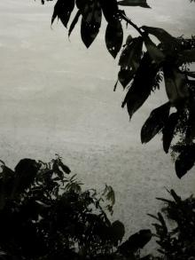 Der Regen hält die ganze Nacht an.