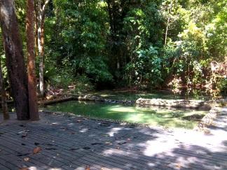 Eiskalt: Der Dschungelpool, gespeist von Wasser aus dem Regenwald