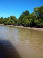 Auch im Seitenarm des Flusses ist die Ebbe deutlich erkennbar.