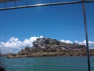 Vor Satang gelegen: ein Felsen auf dem lauter Seevögel brüten