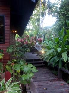 Vor meiner Cabin die Terrasse mit Hängematte und Sitzmöglichkeiten