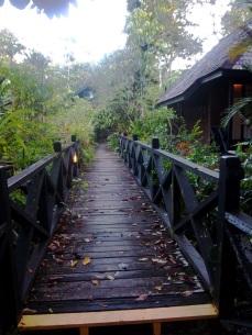 Typischer Plankenweg im Sepilok Resort