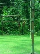 Durch die Einweg-Glasscheibe können wir die Affen sehen, aber sie uns nicht