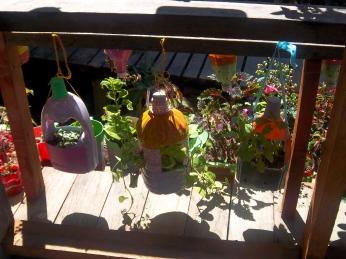 Waschmittelflaschen dienen als Blumentöpfe