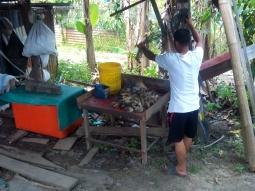 Ein Fischer liefert seinen Fang Flussgarnelen ab