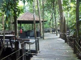Die Frühstücksplattform im Dschungel