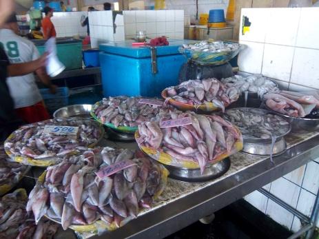 Tintenfisch ohne Ende. Am liebsten hätte ich hier eingekauft