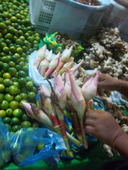 Das sind Ingwerblüten, die ebenfalls zum Kochen benutzt werden.
