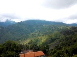 Pause mit Blick auf die dichten, etwas nebeligen Regenwälder im Inland
