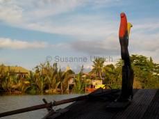 Abendfahrt auf dem Sarawak