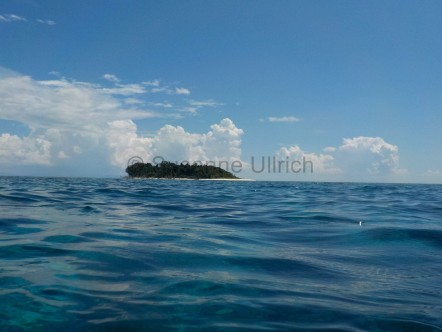 Sipadan, die Insel der Träume