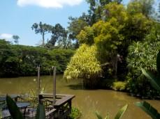 Idyllischer Blick auf den See im Resort
