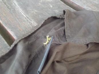 Eine winzige Gottesanbeterin hat sich auf meiner Bluse niedergelassen