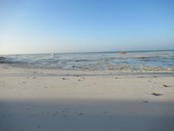 Der Strand vor der Red Monkey Lodge bei Ebbe
