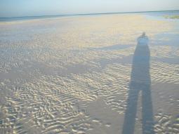Die endlose Sandbank lädt zum Spaziergang ein