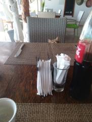 Die Katzen waren keine guten Gesprächspartner, aber immer zur Stelle wenn es Essen gab