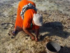 Mit dem Stab holt sie den Oktopus aus seiner Höhle