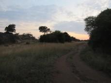 Schnappschuss 10m vom Camp entfernt