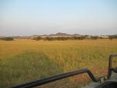 Die Landschaft in der Morgensonne ist wunderschön