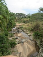 Immer wieder durchqueren wir halb-trockene Flussbetten