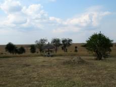 Ein Rastplatz mitten im Nationalpark
