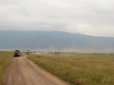 Mit uns sind über 40 Jeeps vor Ort